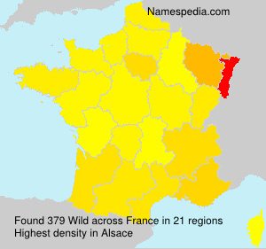 Surname Wild in France