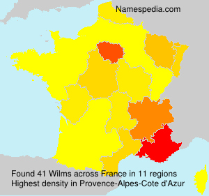 Surname Wilms in France