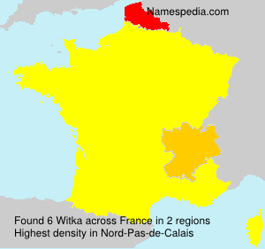 Surname Witka in France