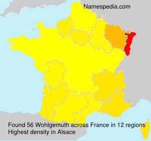 Surname Wohlgemuth in France