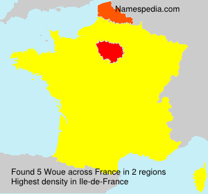 Surname Woue in France