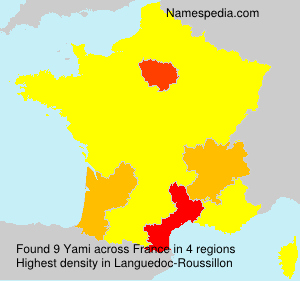 Surname Yami in France