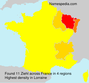 Surname Ziehl in France