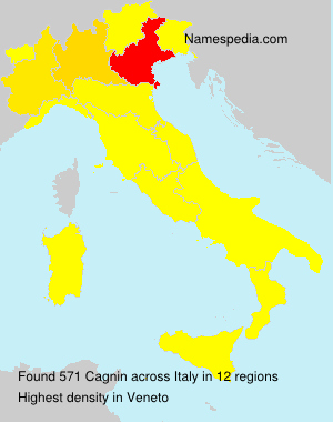 Surname Cagnin in Italy