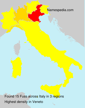 Surname Fuss in Italy