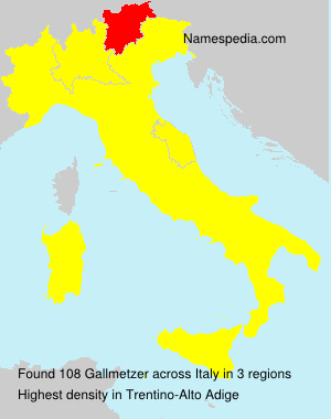 Surname Gallmetzer in Italy