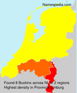 Surname Buckinx in Netherlands