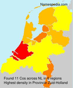 Surname Cos in Netherlands