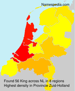 Surname King in Netherlands