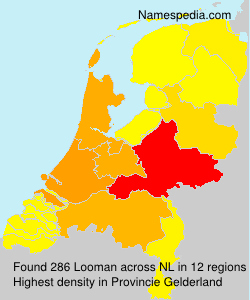Surname Looman in Netherlands