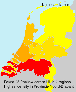 Surname Pankow in Netherlands