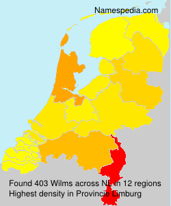 Surname Wilms in Netherlands