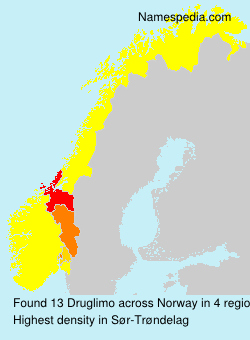 Surname Druglimo in Norway