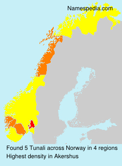 Surname Tunali in Norway