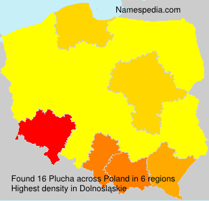 Surname Plucha in Poland