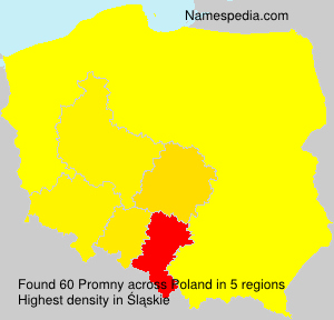 Surname Promny in Poland