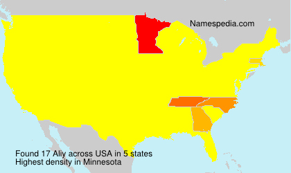 Surname Aliy in USA