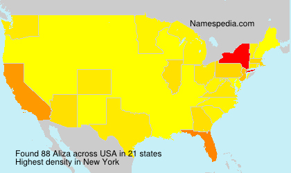 Surname Aliza in USA