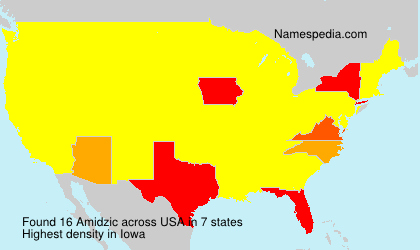 Surname Amidzic in USA