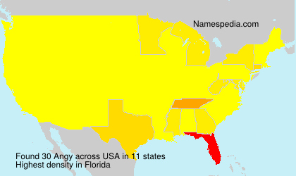 Surname Angy in USA