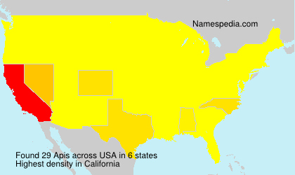 Surname Apis in USA