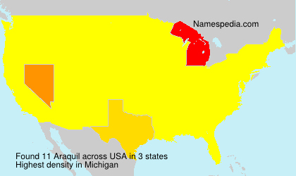 Surname Araquil in USA