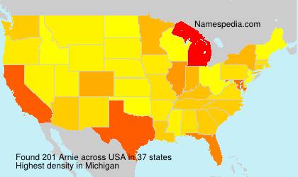 Surname Arnie in USA