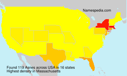 Surname Asnes in USA