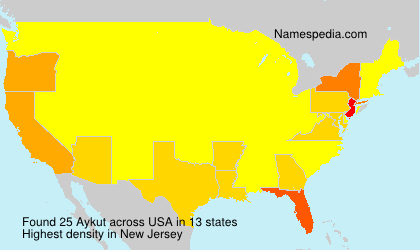 Surname Aykut in USA