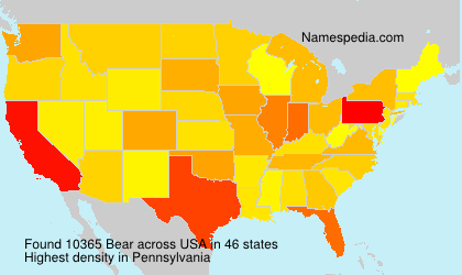 Surname Bear in USA