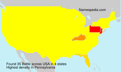 Surname Beltle in USA