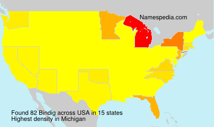 Surname Bindig in USA
