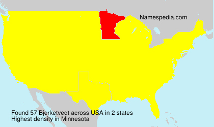Surname Bjerketvedt in USA