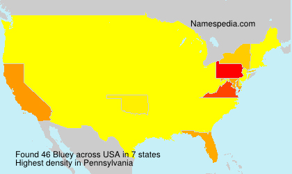 Surname Bluey in USA