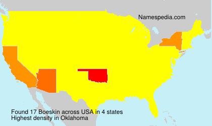 Surname Boeskin in USA