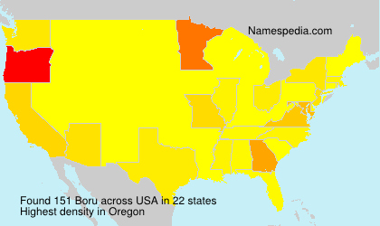 Surname Boru in USA