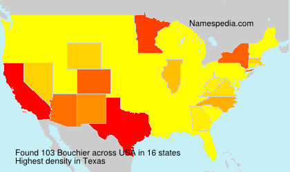 Surname Bouchier in USA