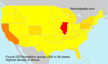 Surname Brandolino in USA