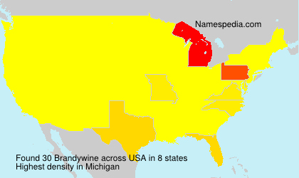 Surname Brandywine in USA