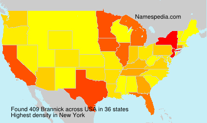 Surname Brannick in USA