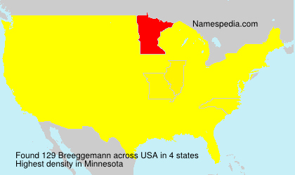 Surname Breeggemann in USA