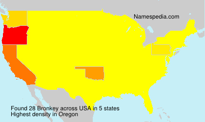Surname Bronkey in USA
