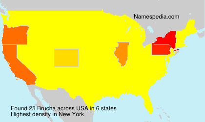 Surname Brucha in USA