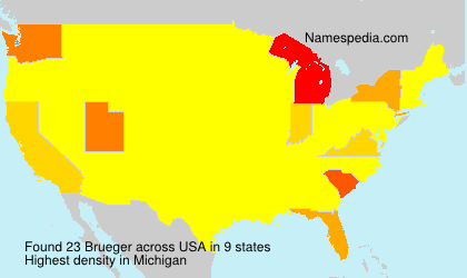 Surname Brueger in USA
