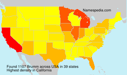 Surname Brumm in USA