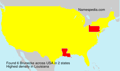 Surname Brunecke in USA