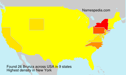 Surname Brunza in USA