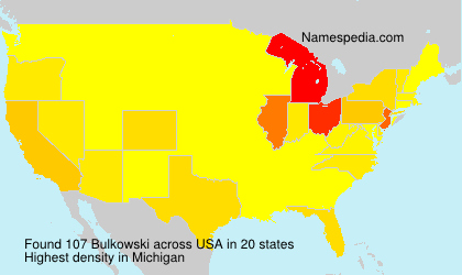 Surname Bulkowski in USA