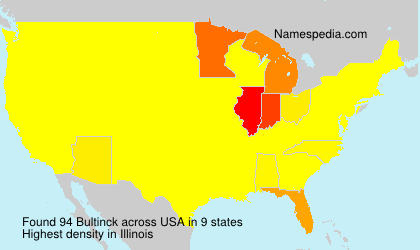 Surname Bultinck in USA
