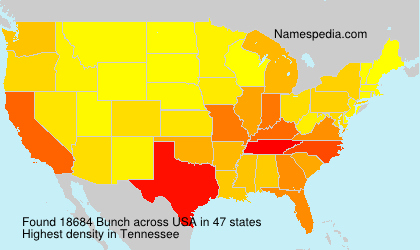 Surname Bunch in USA